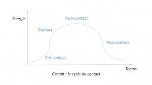 cycle du contact